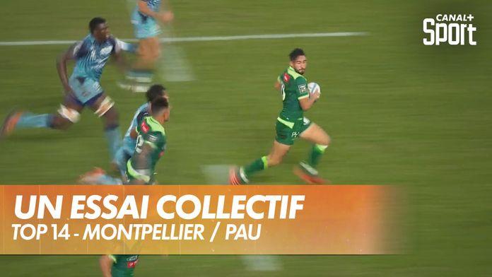 Les Palois répondent au MHR : Montpellier / Pau