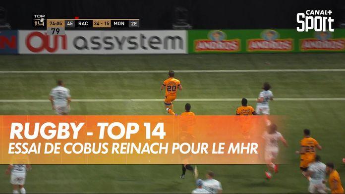 Cobus Reinach y va de son essai pour Montpellier : TOP 14