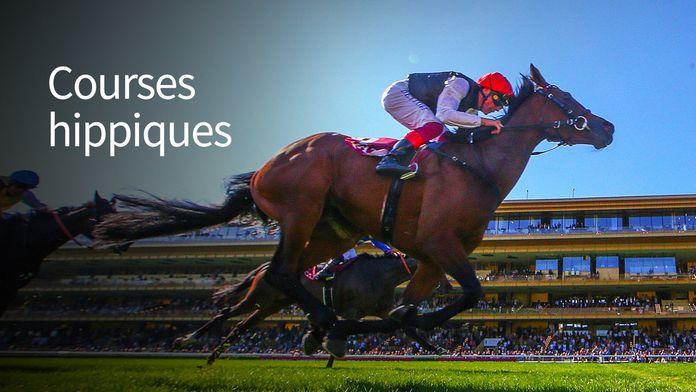 Equitation - Qatar Arc Trials 2020