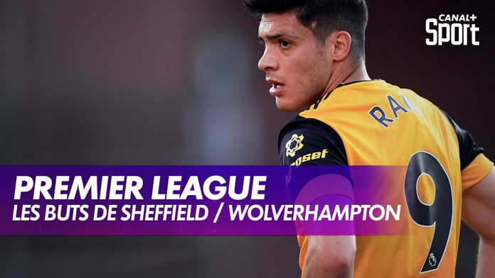 Les buts de Sheffield / Wolverhampton : Premier League