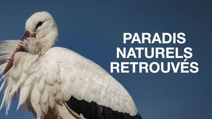 Paradis naturels retrouvés
