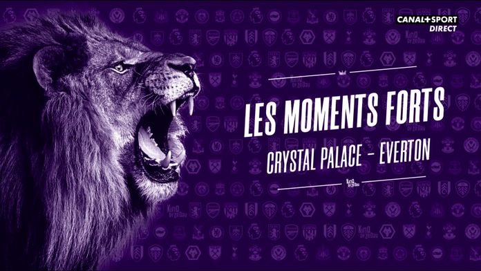 Les moments forts de Crystal Palace - Everton : King Of Ze Day