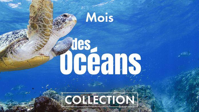 Le mois des océans