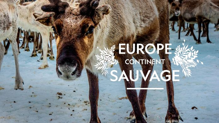 Europe, continent sauvage - S1 - Ép 1