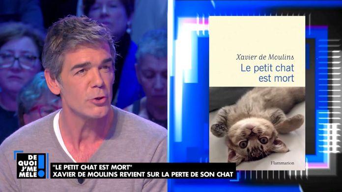 """Xavier de Moulins, son nouveau livre """"Le petit chat est mort"""" évoquant ses relations familiales"""