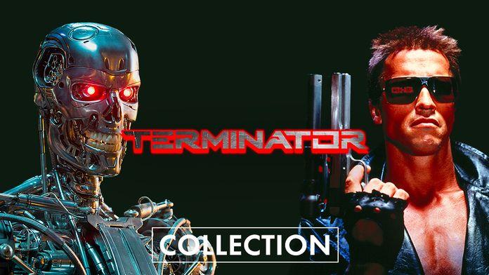 Retrouvailles avec le cyborg du futur, Terminator !